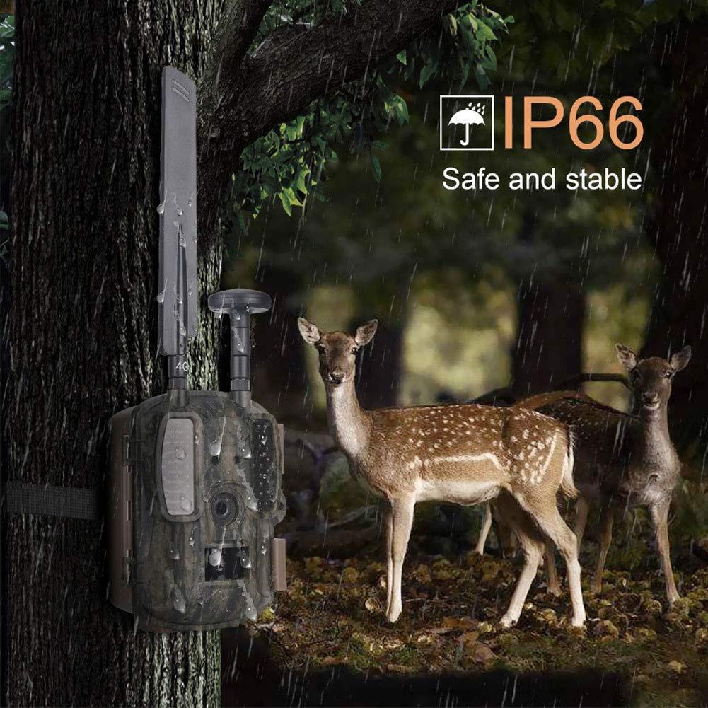 illustration de la camera de chasse sous la pluie